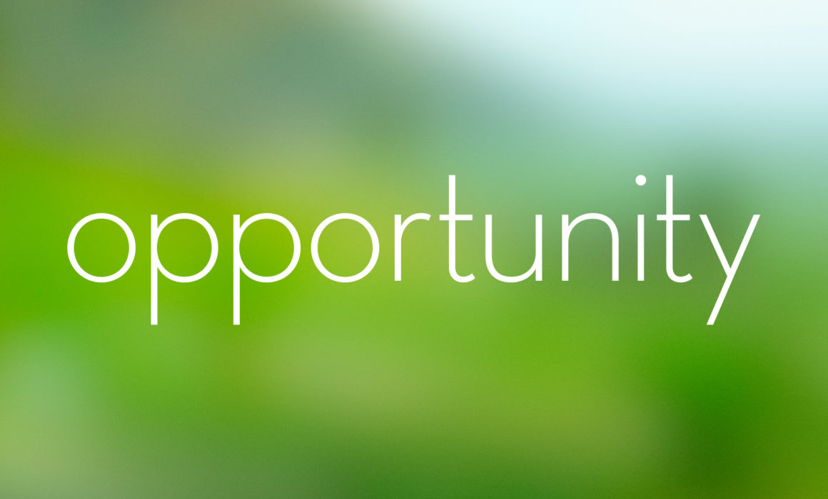 blog-theme-rotator-opportunity